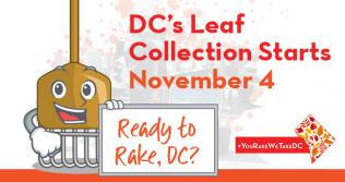 Leaf Collection Starts November 4
